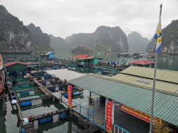 Cat Ba Fishing Villages