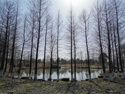 Hangzhou: Xianghu Lake
